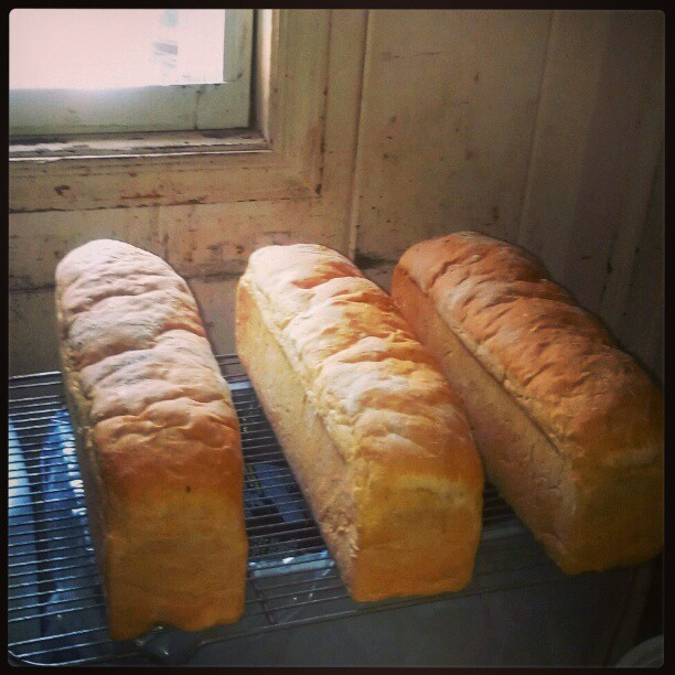 Cindy's Freash Bread Cooling window side. - from Instagram